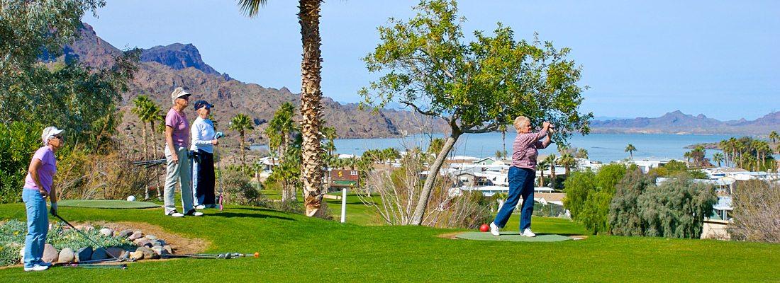 Executive Golf Course at Havasu Springs Resort